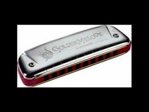 Rooth na jaana on diatonic harmonica.mp4