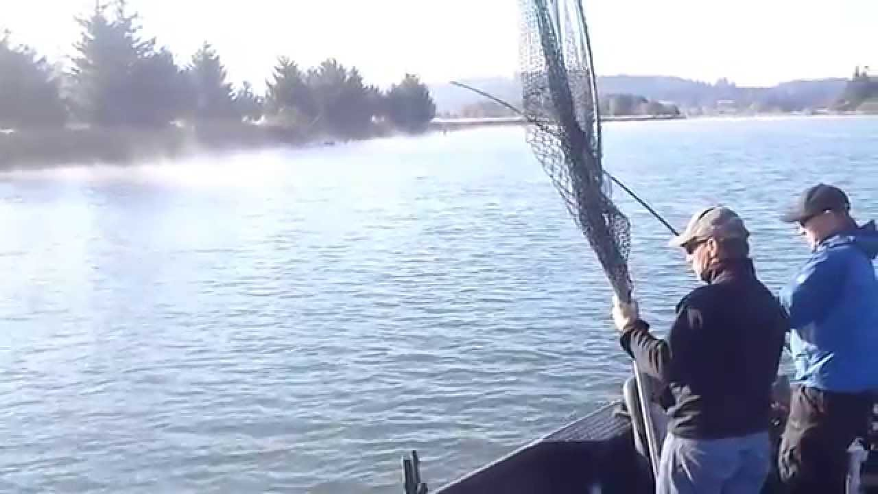 Large coquille river salmon fishing with for Oregon salmon fishing report
