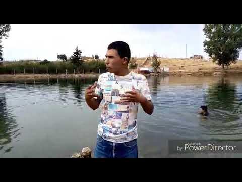 المنابع الطبيعية للمغرب يتم إستنزافها _ نمودج ضاية عوا