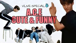 A.C.E (에이스) CUTE & FUNNY MOMENTS #34 [VLIVE SPECIAL!]