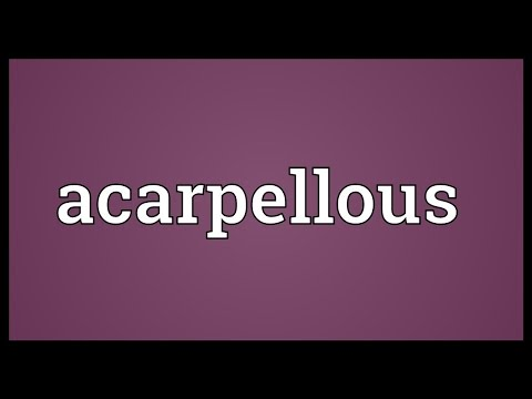 Header of Acarpellous