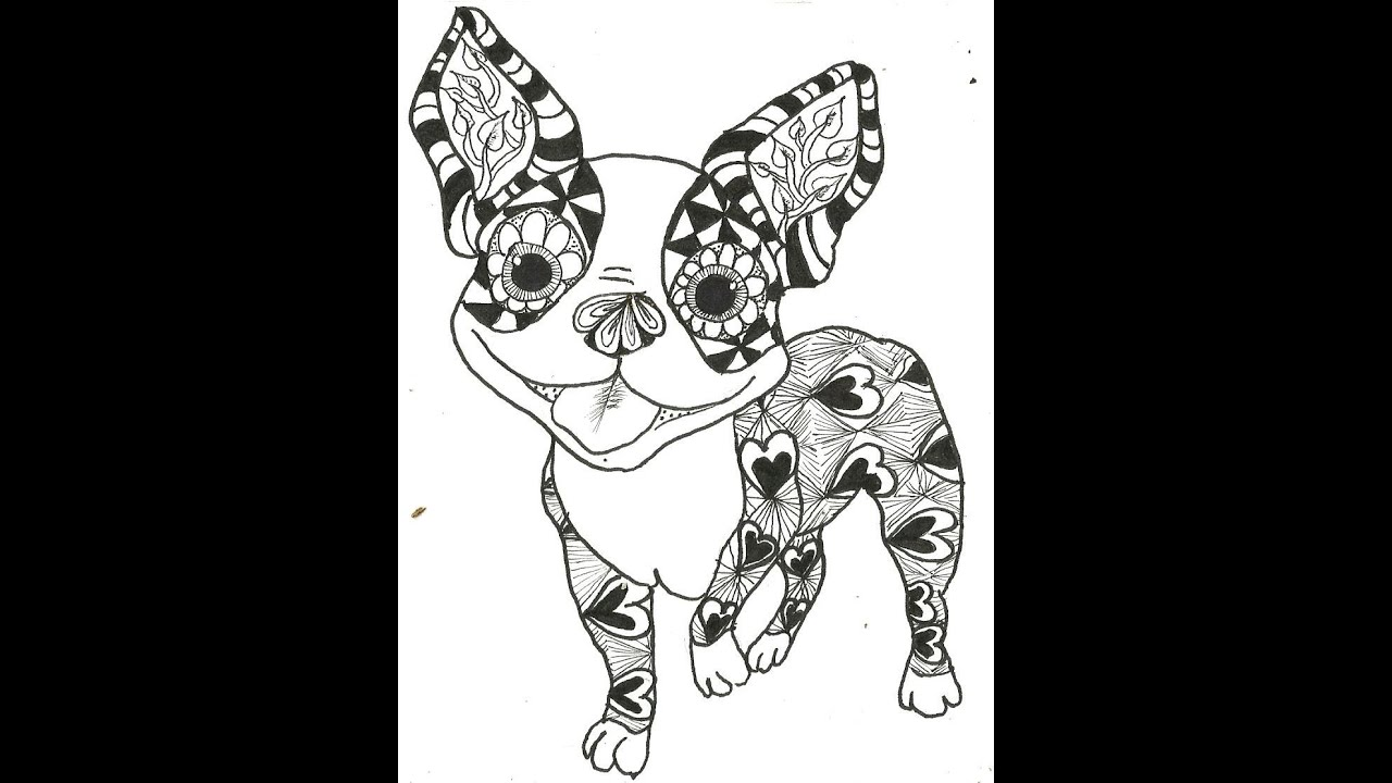 Boston terrier coloring page pictures