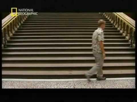 National Geographic - Descubrimientos Asombrosos - El Origen del  Hombre - Español 2.5