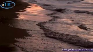 Bngla Islamic Song ( papi ami kemone takbo mawla kobore)