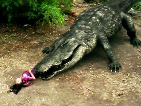 Mega Python vs. Gatoroid is listed (or ranked) 18 on the list The Best Syfy Original Movies