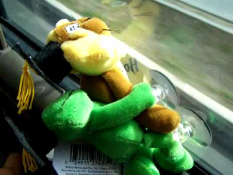 Stuffed Animal sex ( lion and frog )