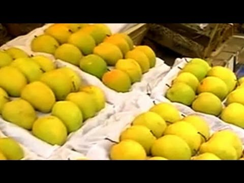Why European Union's ban on alphonso mangoes a sweet deal for Indian buyers