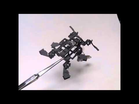 Robótica - Robot cucaracha capaz de escalar