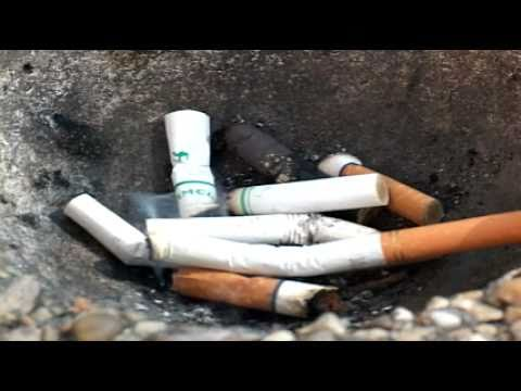 World Health Organization attempts to ban smoking in movies