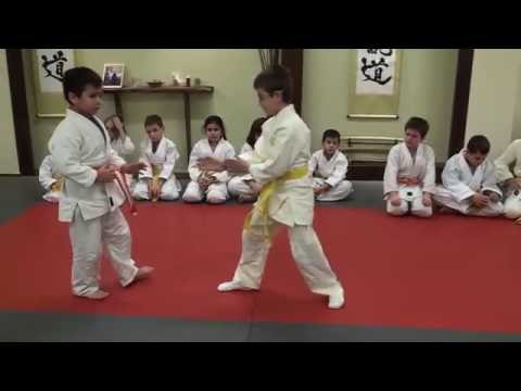 Aikido Training Center children' s class demonstration Image 1