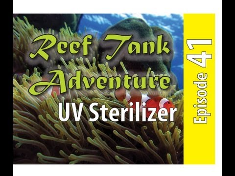 Reef Tank Adventure #41 UV Sterilizer Emperor Aquatics