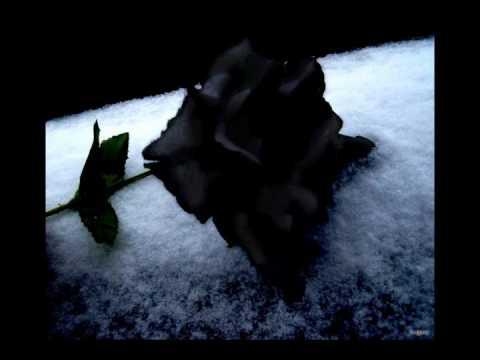 Luca turilli- Black rose