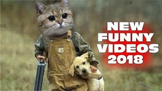 ПРИКОЛ-LACK OF JOY - NEW FUNNY VIDEOS 2018