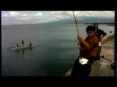 8kg GT caught 5june2012 @ Legazpi City, Albay