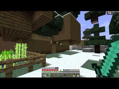 minecraft mostrando a casa