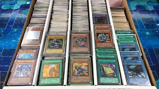 BEST MASSIVE $32,000 YuGiOh Card Collection Revealing Extravaganza EVER! Expensive Box Opening!
