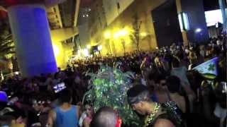 Giant weed plant found at Ultra Music Festival 2013