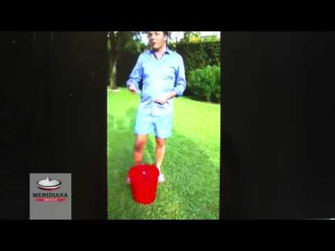 Matteo Renzi ha accettato l'Ice Bucket Challenge: ecco la sua secchiata gelata per la SLA