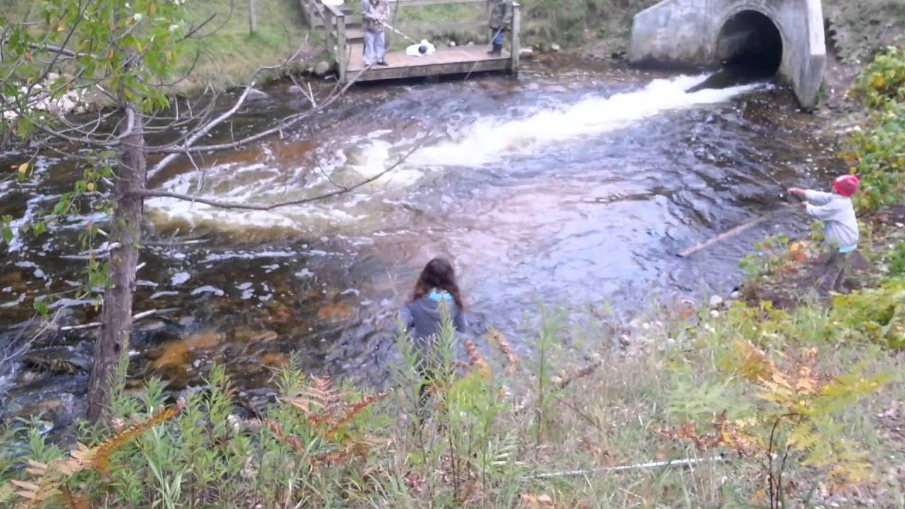 Salmon fishing traverse city youtube for Traverse city fishing charters