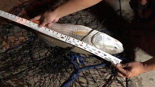 Okaloosa Island Fishing Pier (Florida) 4K