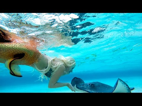 Real Mermaid found at south Australia beach