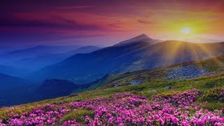 Beautiful Relaxing Nature, Healing Sleep Meditation, Peaceful Piano Music, Healing Nature Spirit★ 42