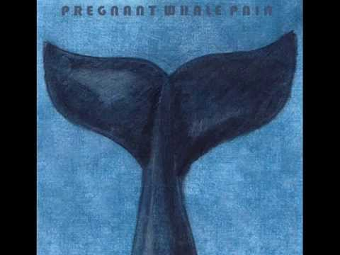 Pregnant Whale Pain - Mythical Creature