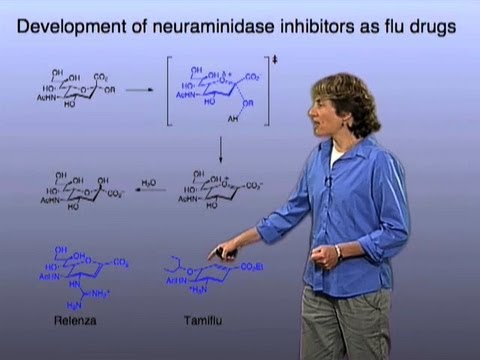 Tamiflu and Relenza - Carolyn Bertozzi (Berkeley/HHMI)