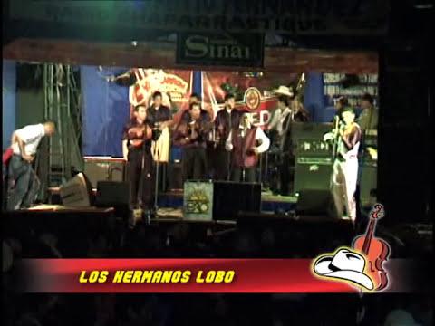 Chanchona Los Hermanos Lobos En Festival Campirano