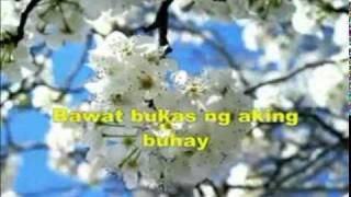 Walang Hanggan by Wency Cornejo & Cookie Chua with Lyrics