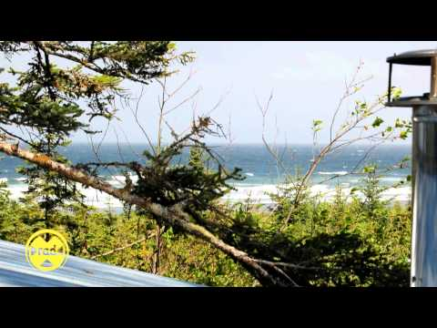 Day 115 - First Night, Clutter and Beach BBQs - Masa Off Grid