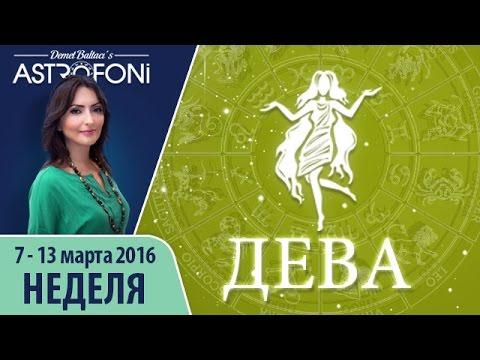 магазинов гороскоп декабрь 2016 женшина дева аттестации обучения