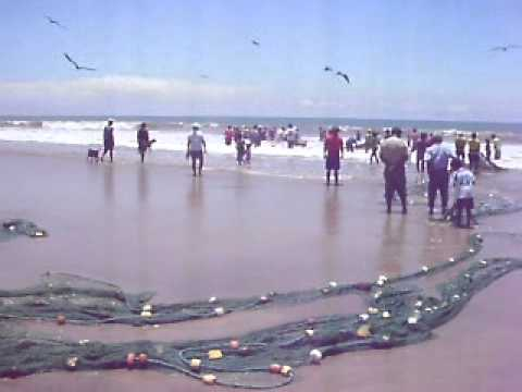 Fishermen Bringing in the Daily Catch at  Manglaralto Beach in Southern Ecuador