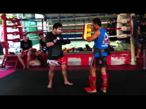 Muay Thai Training - Pad Work Image 1