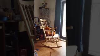 Spooky Teddy 🎃 | Self-rocking Chair & Rotating Head | powered by Arduino