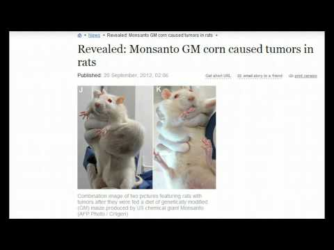 Revealed: Monsanto GM Corn Caused Tumors In Rats