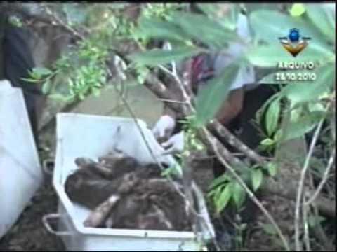 Homicídio em Miraporanga é esclarecido (Pte 1)