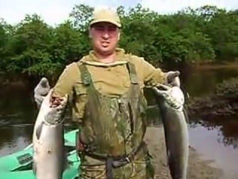 рыбалка на кижуча на сахалине