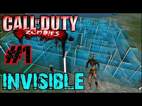 Call of Duty Custom Zombies: INVISIBLE ZOMBIES?▐ The Attack of the Invisible Zombies (Part 1)