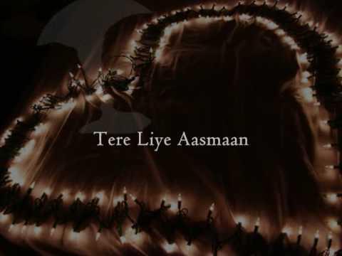Navin Kundra - Tere Liye with Lyrics & English Translation