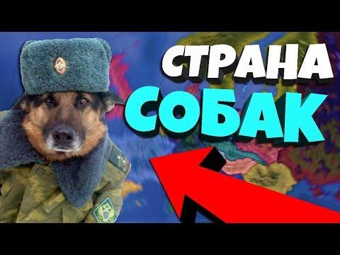 РЕСПУБЛИКА СОБАК В Hearts of Iron 4: Battle Royale + Doge Republic