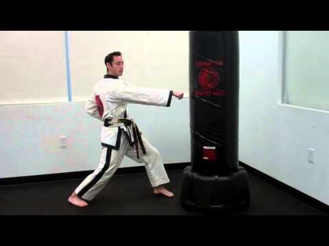 Warren Levi Martial Arts- Reverse Punch