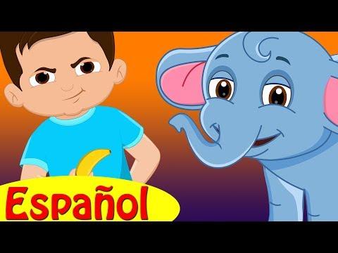 El Niño y el Bebé Elefante ? Cuentos para Dormir para Niños en Español | ChuChu TV Cuentacuentos