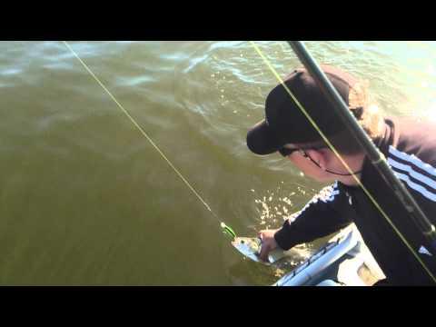 ловля на каблисту видео
