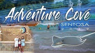 Adventure Cove Sentosa 2019