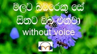 Malata Bambareku Se Karaoke (without voice) මලට බඹරෙකු සේ