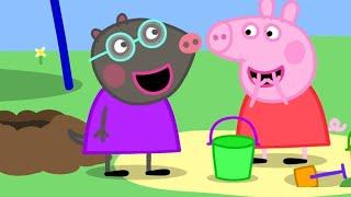 Peppa Pig English Episodes 🎄New Friend! Molly Mole 🎄 Peppa Pig Christmas   Peppa Pig Official