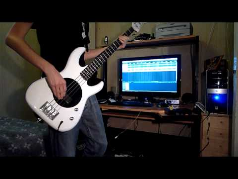 The Adventures of RainDance Maggie - Red Hot Chili Peppers - Bass Cover