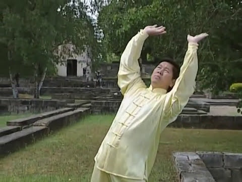The 18 Tai Ji Qi Gong - the 8 Pieces of Brocarde and the 5 Animals