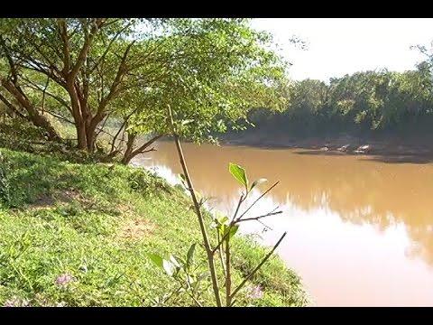 Revitalização do rio São Francisco - Jornal Minas